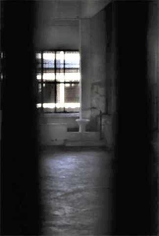 pict-The toilets, hardly hidden, are often shared by up to 50 people in a cell depending on the prison.jpg