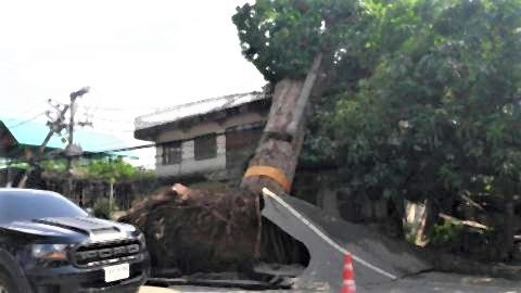 pict-Watch out for the strong winds.jpg