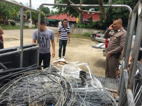 pict-Wire Cutting Thieves.jpg