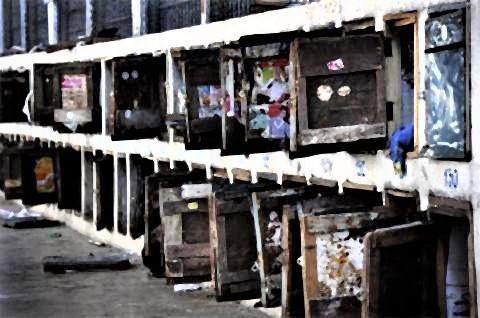 pict-jail-11.jpg
