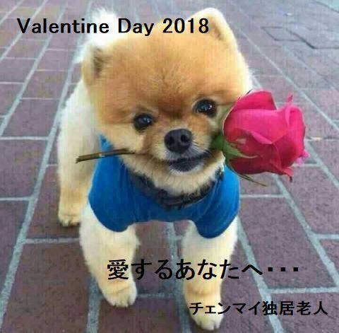pict-pict-1518637574011バレンタインデー.jpg