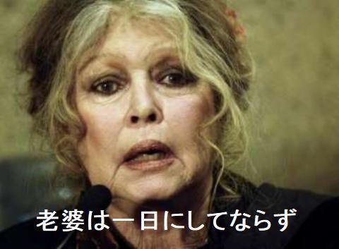 pict-pict-ブリジット・バルドーさん(83).jpg