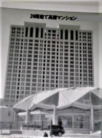 pict-pict-pict-DSCN3093白鳳タワー.jpg