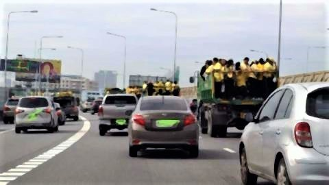 pict-trucks carrying yellow-clad royalists.jpg